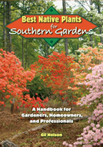 Best Native Plants for Southern Gardens