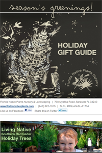 newsletter holiday 2012